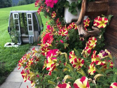 Üppige Ernte und Blumenpracht